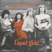 Purchase Liquid Gold - Where Did We Go Wrong (VLS)