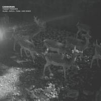 Purchase Cassegrain - Tiamat Remixes (EP)