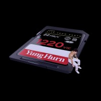Purchase Yung Hurn - 1220