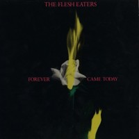 Purchase The Flesh Eaters - Forever Came Today (Vinyl)