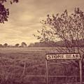 Buy Stone Bear - Stone Bear Mp3 Download