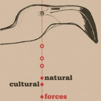 Purchase Warren Smith - Natural & Cultural Forces
