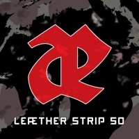 Purchase Leaether Strip - 50