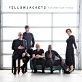 Buy Yellowjackets - Raising Our Voice Mp3 Download