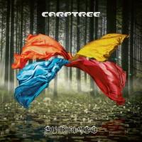 Purchase Carptree - Subimago