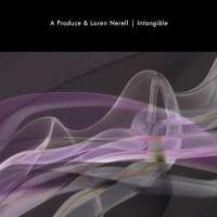 Purchase A Produce - Intangible (With Loren Nerell)