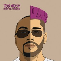 Purchase Zayn - Too Much (CDS)