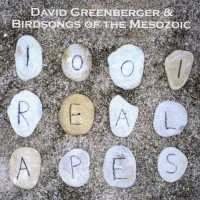 Purchase Birdsongs Of The Mesozoic - 1001 Real Apes (With David Greenberger)