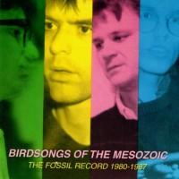 Purchase Birdsongs Of The Mesozoic - The Fossil Record 1980-1987