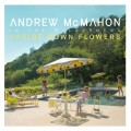 Buy Andrew McMahon In The Wilderness - Upside Down Flowers Mp3 Download
