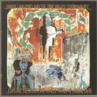 Purchase Jon Langford - Misery Loves Company (With The Pine Valley Cosmonauts)