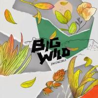 Purchase Big Wild - Invincible (EP)