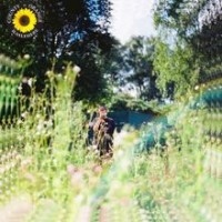 Purchase Rex Orange County - Sunflower (CDS)