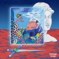 Purchase Agar Agar - Cardan (EP)