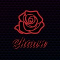 Buy Shawn Stockman - Shawn Mp3 Download