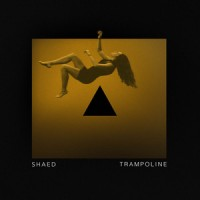 Purchase Shaed - Trampoline (CDS)