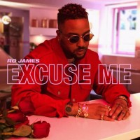 Purchase Ro James - Excuse Me (CDS)