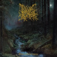 Purchase Infernal Coil - Within A World Forgotten
