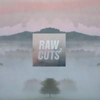 Purchase VA - Chillhop Raw Cuts 2