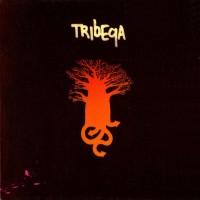 Purchase Tribeqa - Tribeqa