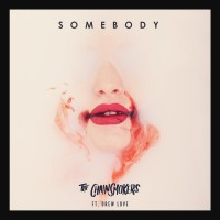 Purchase The Chainsmokers - Somebody (CDS)