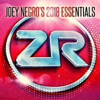 Purchase VA - Joey Negro's 2018 Essentials