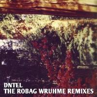 Purchase DNTEL - The Robag Wruhme Remixes