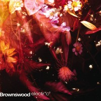 Purchase VA - Brownswood Electric 2