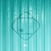 Purchase Hugo Helmig - Wild (CDS)