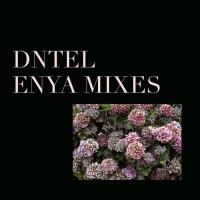 Purchase DNTEL - Enya Mixes