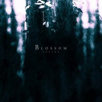 Purchase Lustre - Blossom