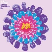 Purchase build an ark - Dawn Remixes (EP) (Vinyl)