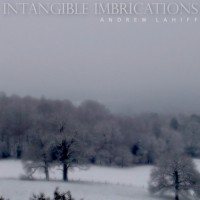 Purchase Andrew Lahiff - Intangible Imbrications