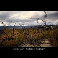 Purchase Andrew Lahiff - Six Trees In The Colony