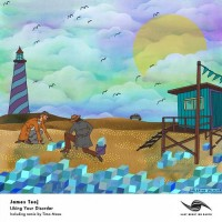 Purchase James Teej - Liking Your Disorder (CDS)