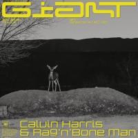 Purchase Calvin Harris & Rag'n'bone Man - Giant (CDS)