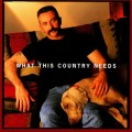 Buy Aaron Tippin - What This Country Needs Mp3 Download