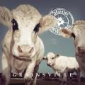 Buy Steve 'n' Seagulls - Grainsville Mp3 Download