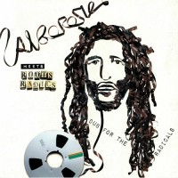 Purchase Alborosie - Alborosie Meets Roots Radics: Dub For The Radicals
