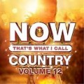 Buy VA - Now That's What I Call Country Vol 12 Mp3 Download