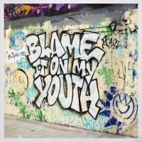 Purchase Blink-182 - Blame It On My Youth (CDS)