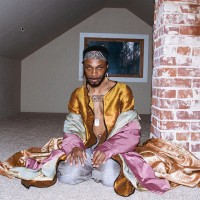 Purchase Jpegmafia - All My Heroes Are Cornballs