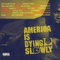 Purchase VA - America Is Dying Slowly (By Hillside)