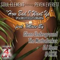 Purchase Soul Element - How Bad I Want Ya (The Remixes)
