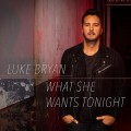 Buy Luke Bryan - What She Wants Tonight (CDS) Mp3 Download