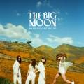 Buy The Big Moon - Walking Like We Do Mp3 Download