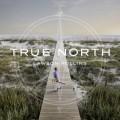 Buy Lawson Rollins - True North Mp3 Download