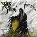 Buy Scars Of The Flesh - Reaching Into The Void Mp3 Download