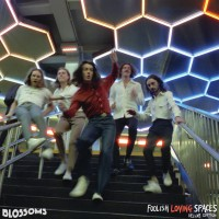 Purchase Blossoms - Foolish Loving Spaces CD2