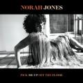 Buy Norah Jones - Pick Me Up Off The Floor Mp3 Download